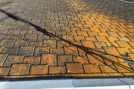 屋根にカビ・苔が生えている・汚れている画像